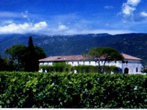 conte brandolini et nino negri wineries 007