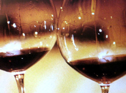 conte brandolini et nino negri wineries 010
