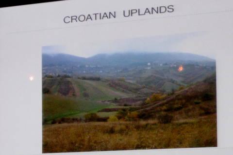 vina croatia 088