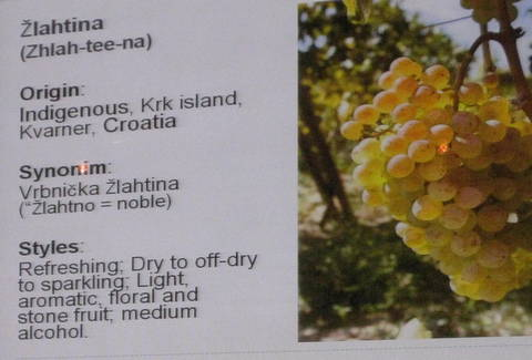 vina croatia 102