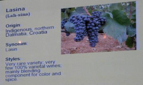 vina croatia 109