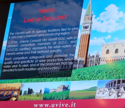 i.Ve is the Association or Consortium of DOC Veneto wines established in January 1980 to ensure the wine quality was the highest.
