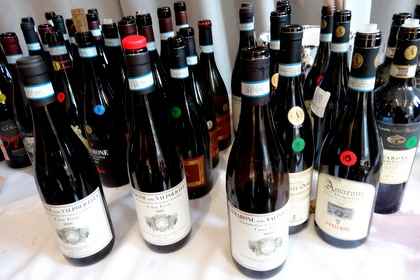 The Amarone wines we tasted during the Master Class on Amarone at the Vinitaly International Academy, #Vinitaly Tour.