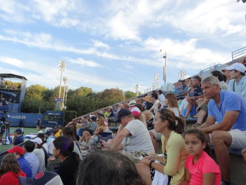 Enthusiastic crowd at the 2014 US Tennis Open
