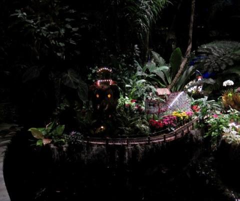New York Botanical Garden Bar Car Nights Carole Di Tosti - Botanical gardens train show bar car