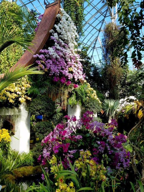 Thai sala, NYBG, Orchid Show: Thailand