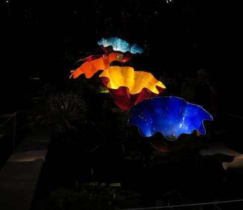 Dale Chihuly's Macchia Forrest (2017), Jazz & Chihuly, Songs of Protest & Reconciliation, New York Botanical Garden, summer concert series