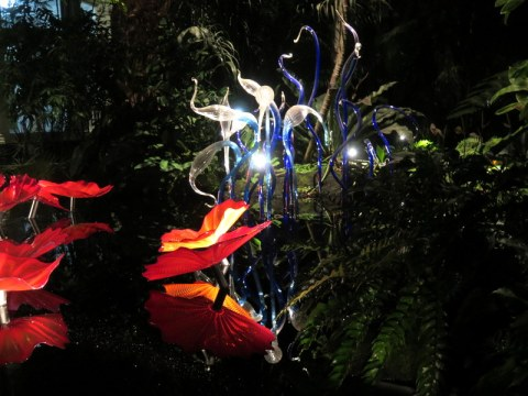 NYBG Palms of the World Gallery, Chihuly's Persian Pond and Fiori (2017), Jazz & Chihuly, Songs of Protest & Reconciliation, New York Botanical Garden summer concert series