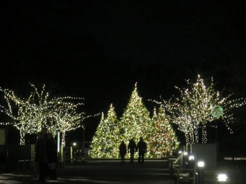 NYBG, Bar Car Nights, Holiday Train Show