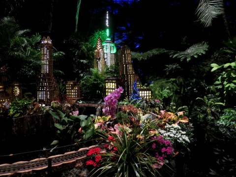 Bar Car Nights, Palms of the World Gallery, NYBG Holiday Train Show, Applied Imagination