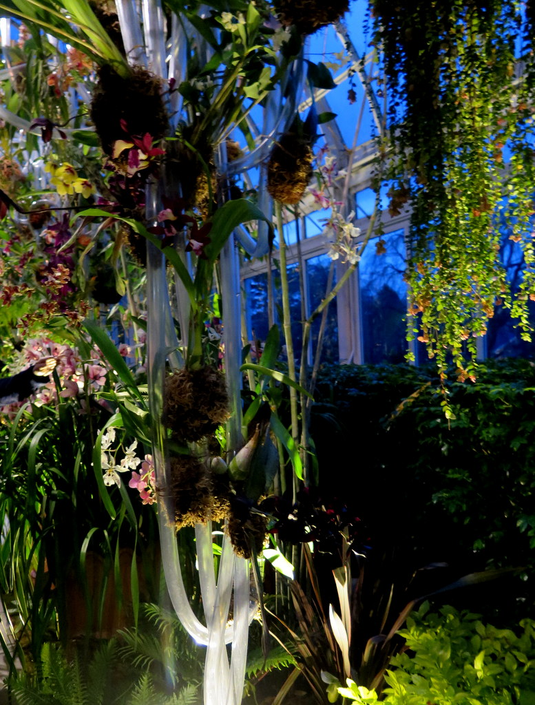 2018 Orchid Show, orchid evenings, Belgian floral artist,