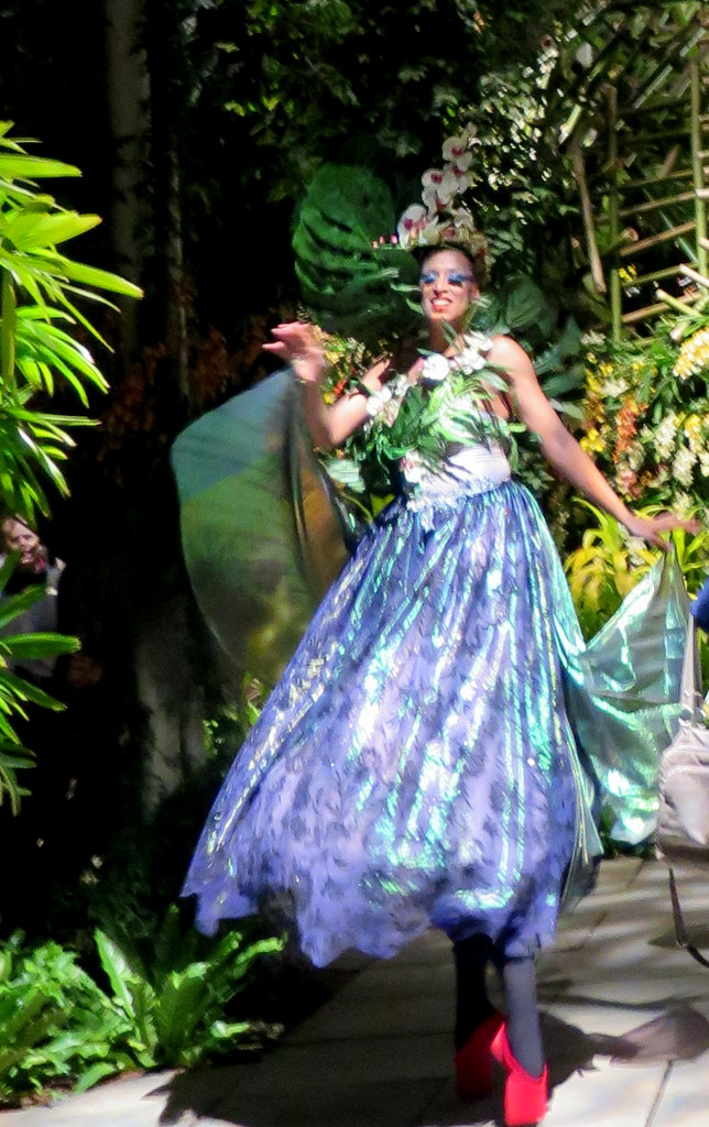 orchid dancer, 2018 nYBG Orchid Show, orchid evenings, Daniël Ost