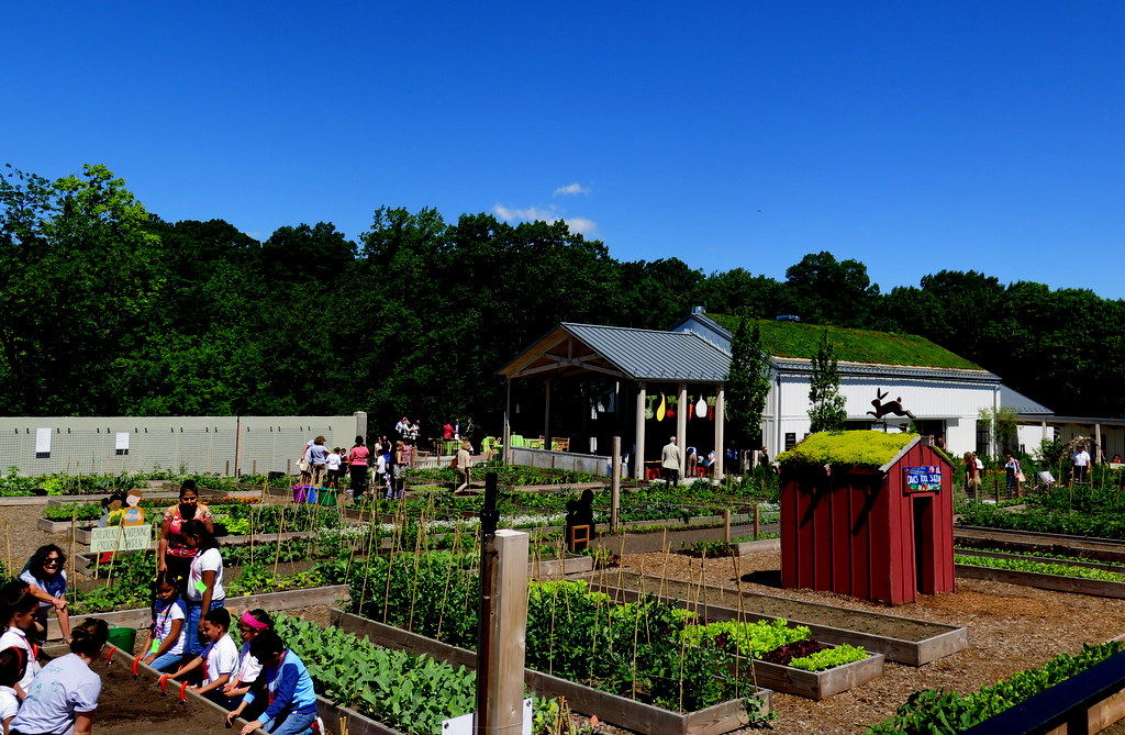 Rappaport Family Toolshed, Edible Academy, NYBG, Opening Day Ceremonies June 14