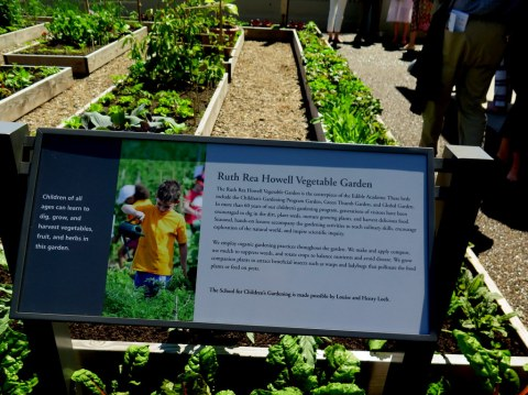 Ruth Rea Howell Vegetable Garden, Edible Academy, NYBG, Opening Day Ceremony June 14