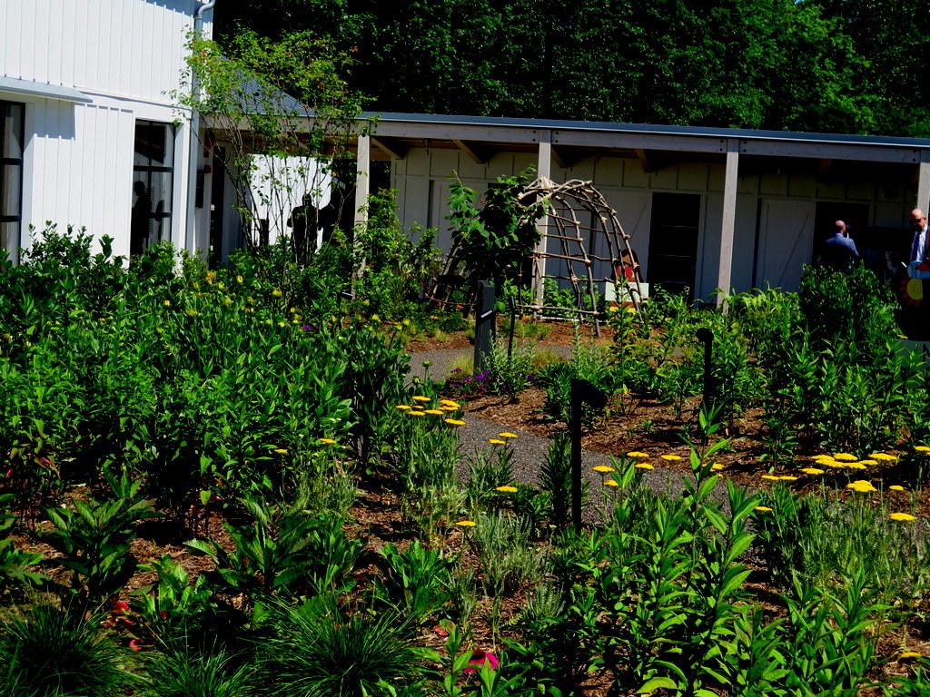 Meadow Garden, Edible Academy, NYBG, Opening Day Ceremonies June 14