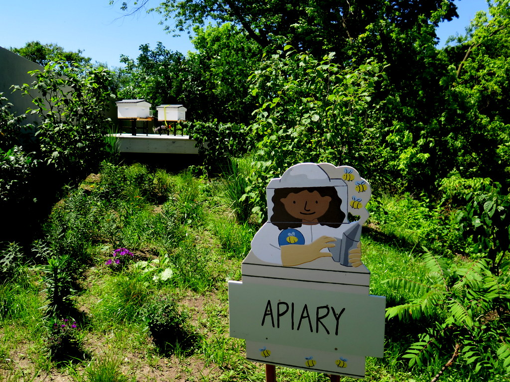 Apiary, Edible Academy, NYBG