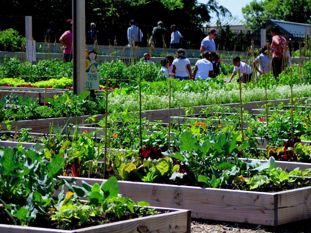 New York Botanical Garden, Edible Academy, Opening Day Ceremony