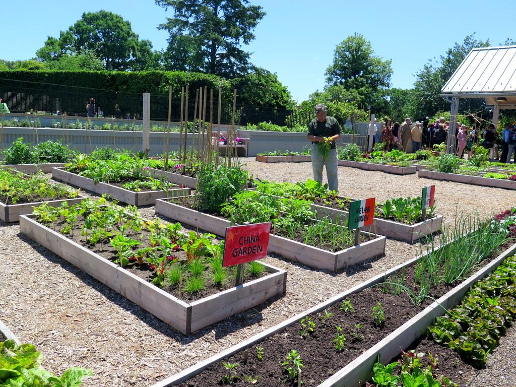 Global Garden, Edible Academy, NYBG,