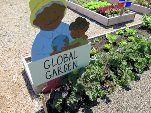 Ruth Rea Howell Vegetable Garden, Green Thumb Garden, Global Garden, Children's Gardening Program Garden, Edible Academy, NYBG