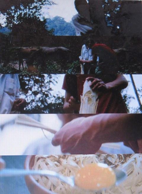 Taste of Sky, Mihael Y. Lei, Tribeca Film Festival 2019, Claus Meyer, NOMA, GUSTU