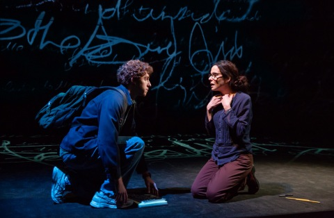 Mary-Louise Parker, Will Hochman, The Sound Inside, Adam Rapp, David Cromer, Studio 54, Lincoln Center Theatre