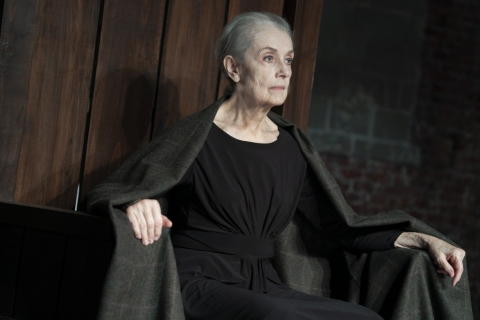 Mary Beth Peil, Macbeth, William Shakespeare, John Doyle, CSC