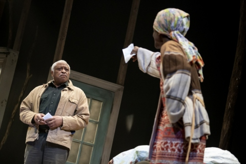 Ron Canada, Patrice Johnson Chevannes, In Old Age, Awoye Timpo, NYTW, Mfoniso Udofia