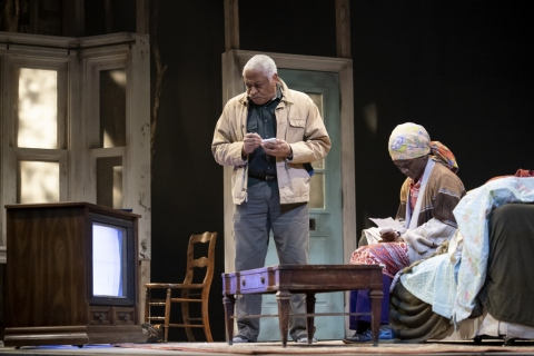 Ron Canada, Patrice Johnson Chevannes, In Old Age, Mfoniso Udofia, Awoye Timpo, NYTW
