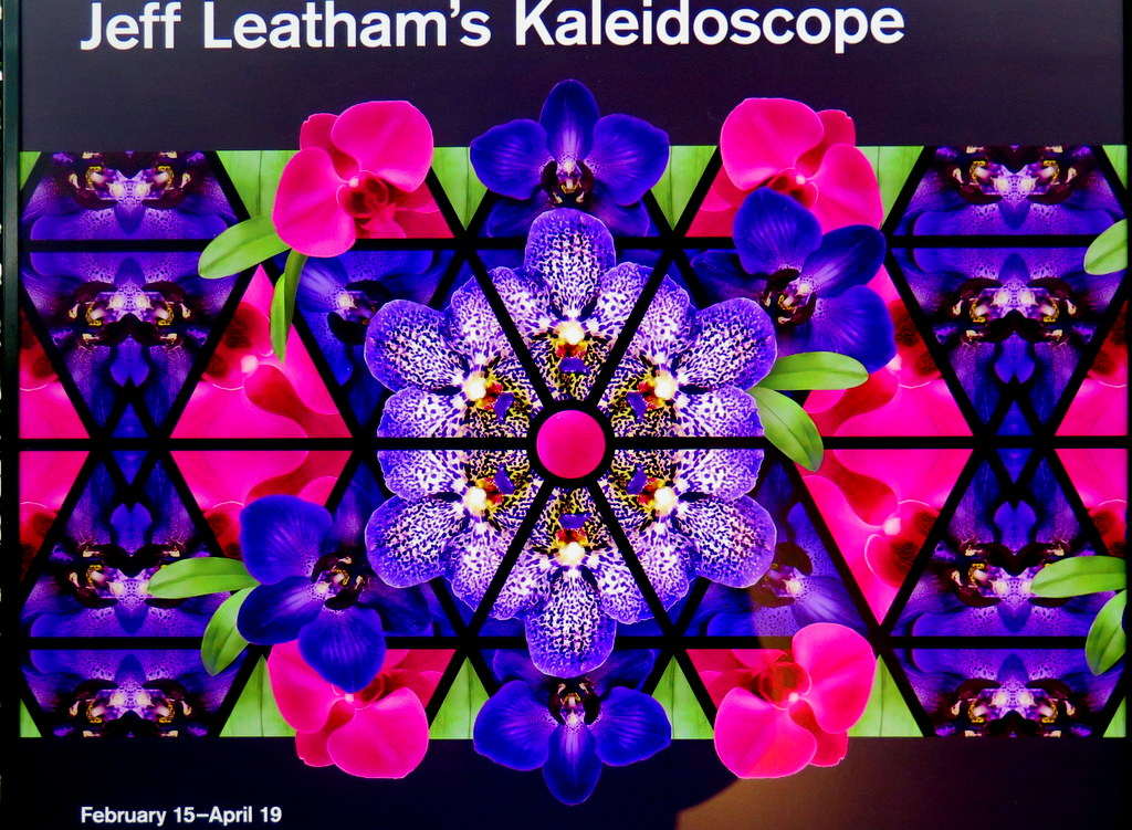 The Orchid Show: Jeff Leatham's Kaleidosope, NYBG 18th Orchid Show, Jeff Leatham