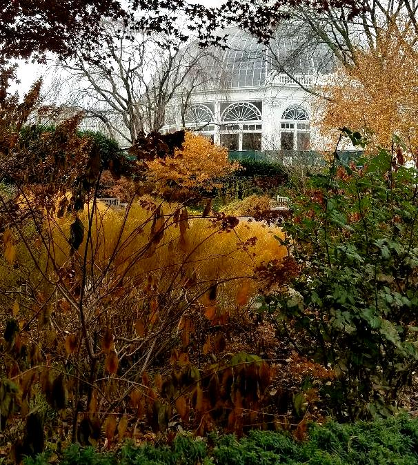 New York Botanical Garden, fall