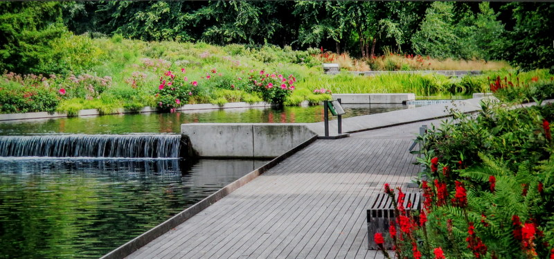 NYBG, Native Plant Garden