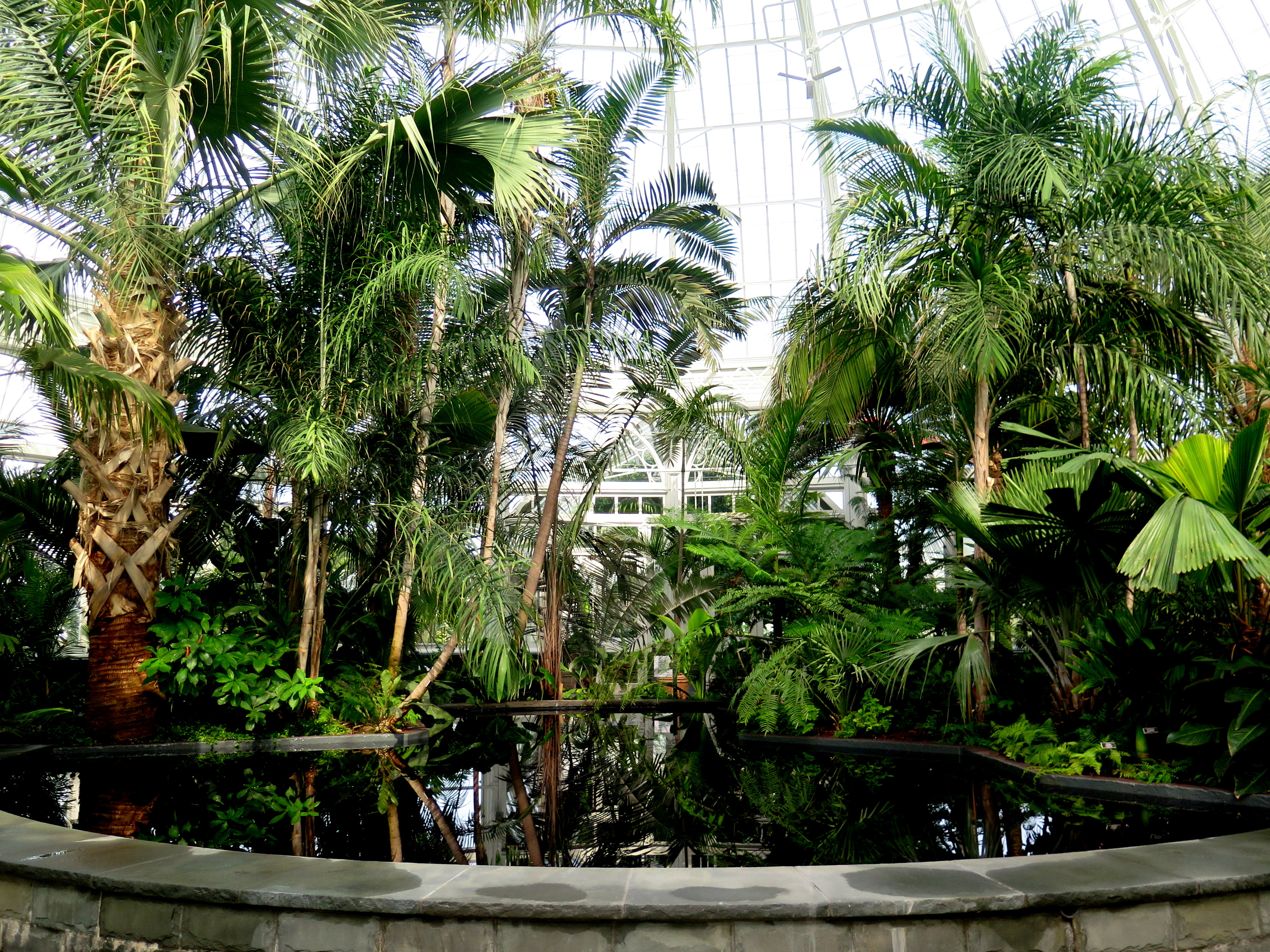 NYBG, Enid A. Haupt Conservatory